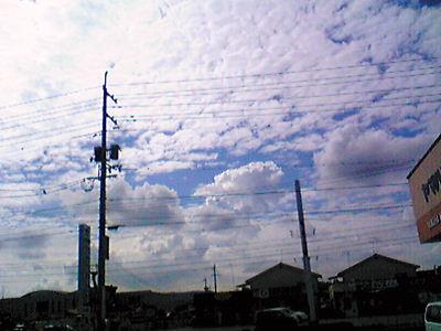 Image111[1].jpg
